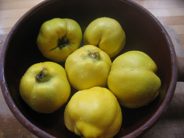 quince ready to bake